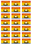 Newbrunswick Flag Stickers - 21 per sheet